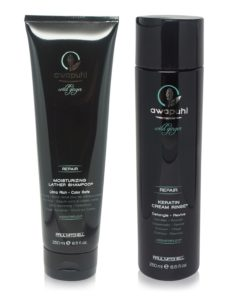 Paul Mitchell Awapuhi Wild Ginger Shampoo and Conditioner Duo 8.5 oz. Combo Pack