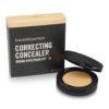 bareMinerals SPF 20 Correcting Concealer Light 2 0.07 oz